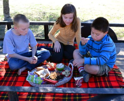 New-Years-Day-Picnic-2